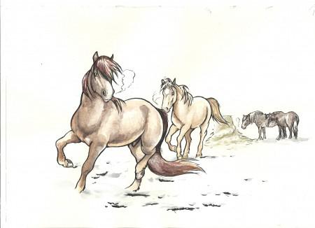 Hevoset ei muokattu