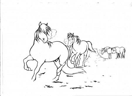 Hevoset linet