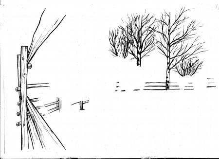 Puusto linet